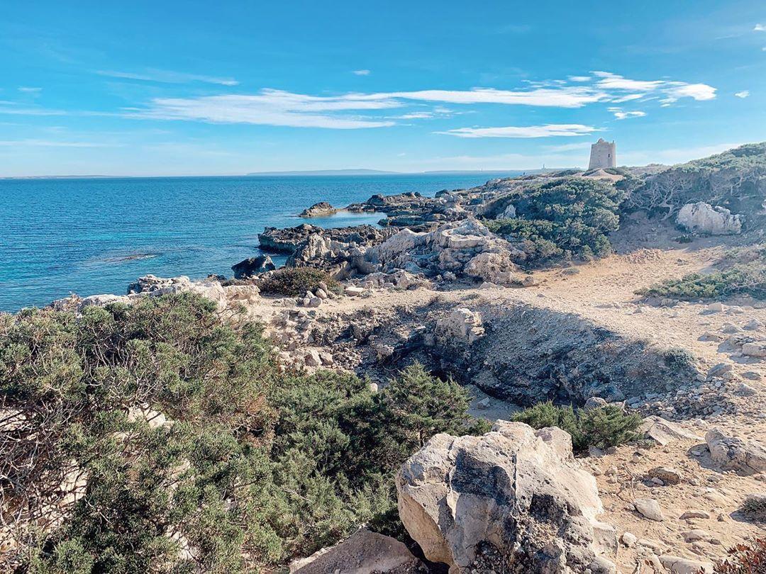 Es Cavallet Ibiza 6