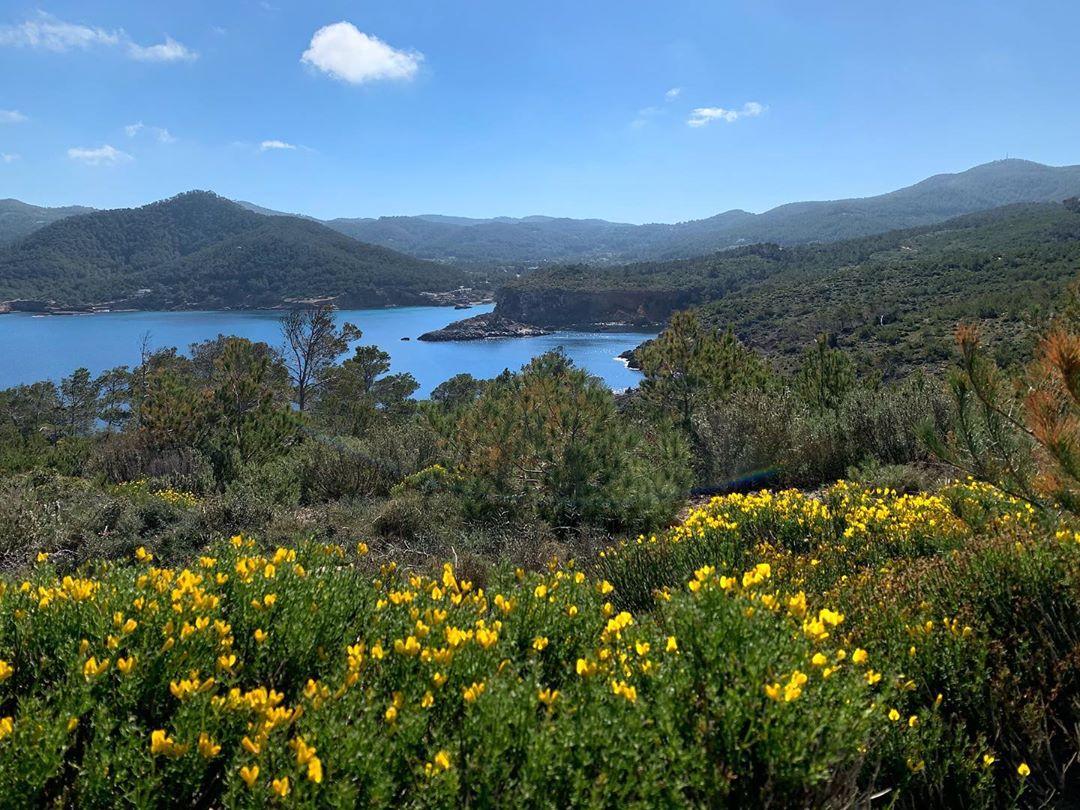 Ruta Punta Xarraco Ibiza 9
